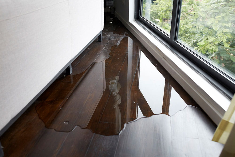 Water Damage Repair in Emmett | Complete Restoration Services